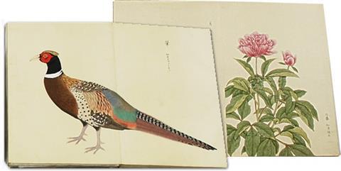 034+201105鳥獣図鑑(松平文庫所蔵資料)(平成23年5月号)鳥獣図鑑(松平文庫所蔵)2